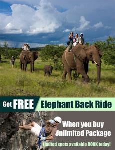 Web-Banners---Elephant-Back-Ride---Zambezi-Eco-Adventures